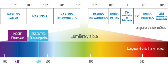 lumiere visible